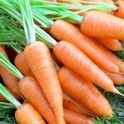 Пюре морковное фото