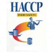 Сертификация систем менеджмента в соответствии с требованиями Международных Стандартов ISO 9001:2008, 14001:2004, OHSAS 18001:2007, ISO 22000 HACCP, ISO 27001, SA 8000. фото