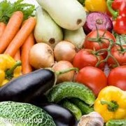 Овощи всех видов. фото