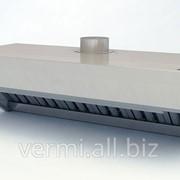 Зонт вентиляционный ЗВН-2/400/2000 фото