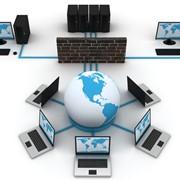 Организация компьютерных сетей (ЛВС/СКС) фото