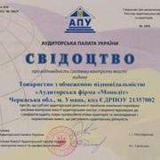 Обовязковий аудит на вимогу Національної комісії з цінних паперів та фондового ринку. фото