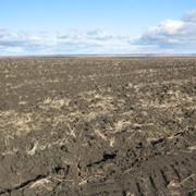 Земли сельскохозяйственного назначения фото