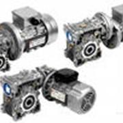 Мотор-редукторы угловые фото