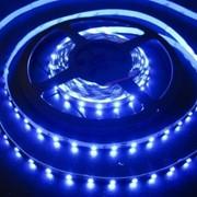 Светодиодная лента SMD3528-300Led-12V,4,8W,IP65,синяя фото