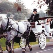 Свадебные кортежи фото