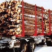 Экспорт леса фото