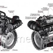 Дизельный генератор ТСС АД-24С-Т400-1РМ20 (F32AM1A) фото
