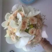 Букет свадебный из роз и фалинопсиса фото