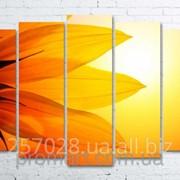 Модульна картина на полотні Великий сонях код КМ100150(132)-069 фото