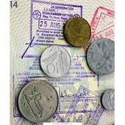 Визы Киев цена фото