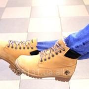 Зимние женские ботинки Timberland фото