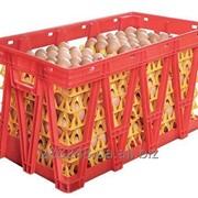 Ящик для перевозки яиц Линдаматик фото