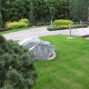 Устройство газона с планировкой и завозом плодородного грунта фото