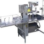 Комплект оборудования для производства майонеза, кетчупа,горчицы и других соусов фото