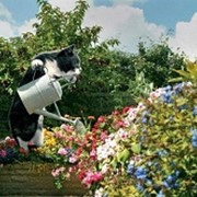 Садовники фото