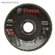 Круг лепестковый конический TUNDRA 115 х 22 мм, Р40 /10/200/ фото