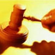 Организация конкурсов и аукционов (торгов) для нужд заказчика. фото