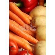 Складирование продуктов питания фото