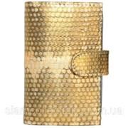 Визитница из кожи морской змеи. EXCLUSIVE SNCH 18-1 Gold фото