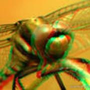 3D стерео фильмы фото