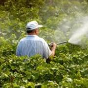Пестициды фото