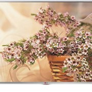 Телевізор LG 32 LB 570 V фото