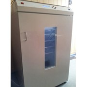 Инкубаторы, инкубатор мечта-1000 фото