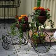 Под цветочники фото