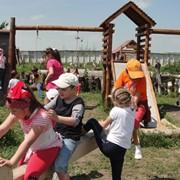 Экскурсия на страусовую ферму с дегустационным обедом и чаепитием. фото