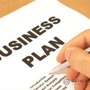 Составление или корректировка бизнес-плана проекта по международным стандартам, ТЭО проект фото