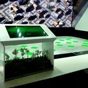 Интерактивный стол аренда фото