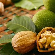 Орехи грецкие, грецкий орех в скорлупе размерами от 25+ до 30 +, Экспорт. фото