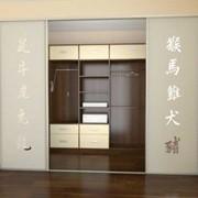 Двери для шкафов купе фотография