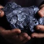 Продажа угля фото