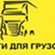 Колодки тормозные дисковые SAF/MB/Gigant/Sauer/BPW/Iveco 29087 фото