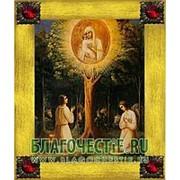 Благовещенская икона Жировицкая Богородица, копия старой иконы, печать на дереве, золоченая рамка, стразы Высота иконы 18 см Красные стразы фото