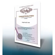 Регистрация договоров на товарные знаки фото