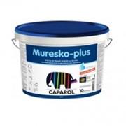 Краска для фасада Muresco Plus фото