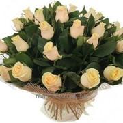 Букет кремовых роз фото