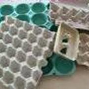 Оборудование для производства бугорчатой прокладки для яиц от производителя. Опт. фото