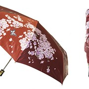 Зонт TRI_SLONA155 фото