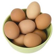 Яйцо куринное фото