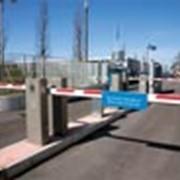 Парковочные системы ParkLite фото