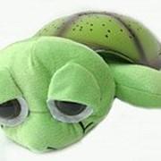 Ночник проектор звездного неба Музыкальная черепаха Music Turtle Green зеленая фото