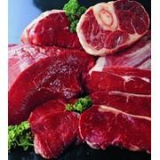 Мясо Халяль фото