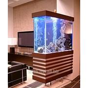 Интерьерные аквариумы фото