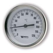 Термометр WATTS погружной 1/2 Ø 80 мм 0-120°С 62мм фото