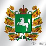 Флаг Томская область фото