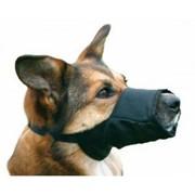 Нейлоновый намордник для собак крупных пород Mouth sleeve for pets фото